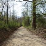 La salita dal Cormor a Fontanabona